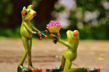 お笑い芸人と人気女優の結婚は、驚きと夢がある!